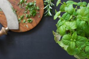 herbal-remedies-lemon-balm